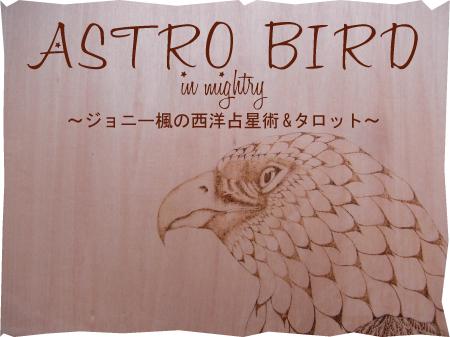 astro-bird.jpg