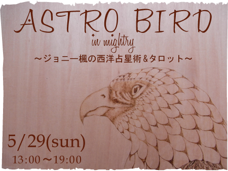 astro-bird2.jpg